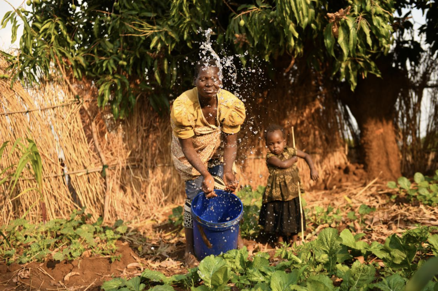 UNICEF Malawi/2020/Thoko Chikondi Sophie watering vegetables in her garden, beside her is her daughter